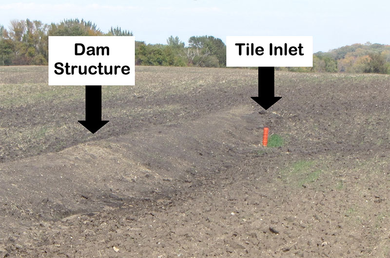 A Water and Sediment Control Basin that was installed in Otter Tail County.