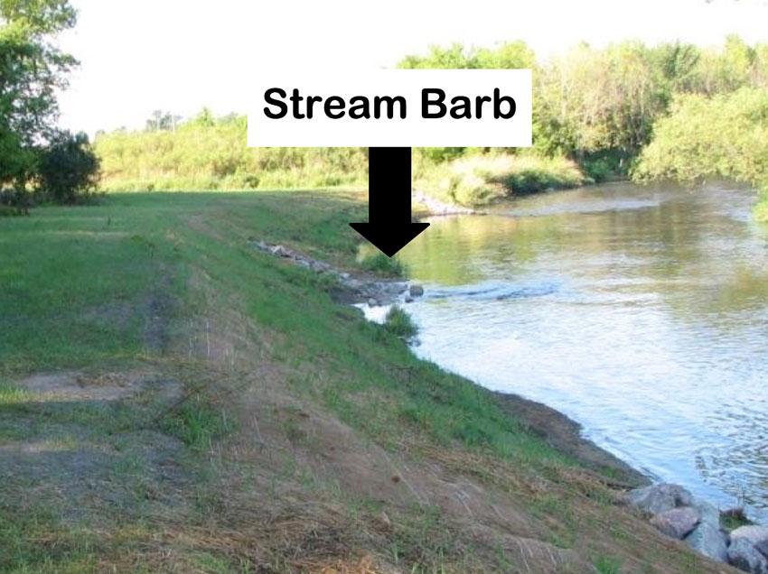 Stream Barb